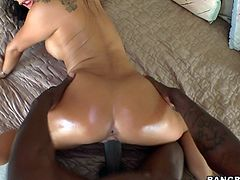 Asian hottie's nailed by a monster black cock