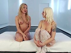Lovely Amy gets undressed and whipped by Lorelei Lee. Later on Amy also gets her ass wired. Then Lorelei drills Amy's vagina and asshole.