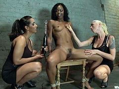 Two dominant vixens are going to play with their sex slave, a sexy ebony who will be toyed, tortured and more.