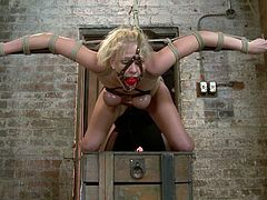This divine and smoking hot siren Allie James is being treated like a piece of meat! She gets suspended and gagged, in order to keep her quite!