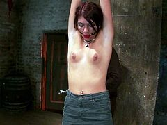 This desirable redhead sex slave Cassandra Nix is being tortured so damn hard. Babe gets hanged up her hands and one of her legs is tugged up high!
