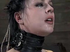 Sweetie loves brutal pleasuring