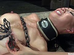 Sexy brunette Isis Love is playing dirty games with Tia Ling in a basement. She shackles and torments Tia and then detroys her tight Asian coochie with a strapon.