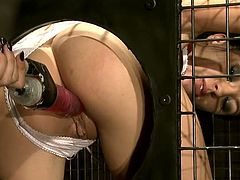 Trashy brunette whore has been bad ass bitch. This is how she's got in that cage. That is her punishment. Dirty wench thrusts her fuck holes at the hole in the cage. Tough mistress stuffs both fuck holes with sex toys fucking her bad.