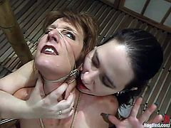 Only hardcore BDSM scenes are on our free porn site and today we are featuring Bridgett Harrington, who gets tortured by Maria Shadoes. So wild!