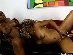 Lustful black sluts with big boobs and booties are tickling one another's pussy with tongues. Check out this hot porn video of provocative ebony porn actresses fucking passionately in steamy lesbian fuck session.