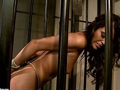 This hot brunette whore must have done something very bad to be locked in the jail cell. Lustful harlot is horny as hell and ready for any sex tortures. Check out this BDSM video and I'm kinda sure you will enjoy watching it.