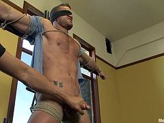 Tied up and blindfolded Landon Conrad gets fingered by a man