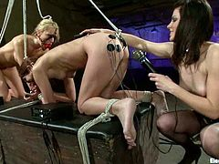 The two hot tied up girls are in doggystyle position so the dominant vixen can have it easy to strapon fuck them hard!