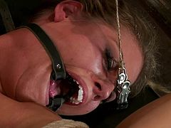 Nasty MILF gets hog tied and gagged. After that she gets her pussy toyed with a vibrator and tits tortured with claws.