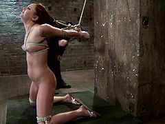 Stunning girl gets tied up in some dungeon. Later on she also gets her tongue tortured. Then she also gets her shaved pussy toyed with a vibrator.