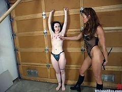 Nerdy brunette girl gets undressed and tied up. After that she gets her body whipped by her hot mistress.