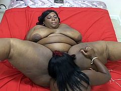 Cum starving lesbian BBBWs try to satisfy each other without any cocks around. They simply use their wet tongues, filthy fingers and big toys to give us the ultimate greasy show.