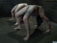 Two freaky girls Iona Grace and Krysta Kaos allow some guy bind them in a basement. The man humiliates the chicks and beats their butts with a stick and then rubs their coochies with a dildo.