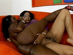 Soaking cooches of two booty black chicks must be licked right now and here. Spoiled black like coal booty lesbian spreads legs wide and kinky mulatto in fishnet top eats her wet cunt passionately.