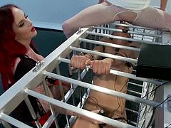 Two redhead mistresses punish and humiliate a girl