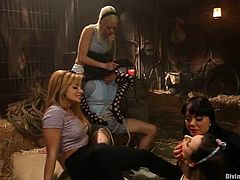 Lea Lexis, Lorelei Lee and their GFs are having fun with some guy in the living room. They make him eat their pussies and then play with his dick and allow him to fuck their throbbing cunts.