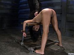 Gorgeous and all wet ebony babe Skin Diamond is being tortured hard. She gets trapped in the device and her master sticks twitches in her pussy!