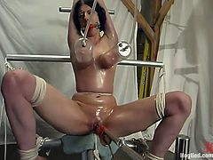 This gorgeous brunette siren gets suspended with a ball gag on and her legs spread wide for a fucking machine. Moreover, honey gets her tasty boobs pumped.