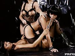 Fantastically seductive women in lacy black lingerie have passionate lesbian threesome. The high quality film is produced by Private studio. Check this out and enjoy your time.