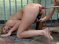 Rain DeGrey gets her ass pounded by fucking machine in BDSM scene