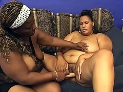 Two obese black lesbians Beauty and Snapps are having some good time together. They finger each other's meaty snatches and then fuck them with a double dildo.
