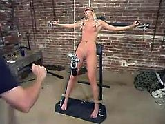This petite and naughty blond siren Heaven Lee is being tortured so fucking hard. She gets suspended and her twat lips get twitched!