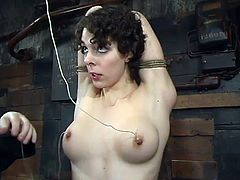 She goes through several torturing methods. First of all she gets seated on the stick, having her hands suspended. Then she gets gagged and twitched on her tits !