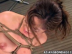 Fine ass chick here totally hogtied and you will see her wishing that she was somewhere else as you will be seeing this really fine looking chick getting some of the wildest pussy torture action that you could imagine.