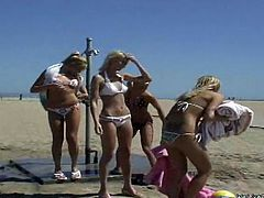 After playing a beach volley match, these four blondes are going to play another match: a lesbian foursome with toy sharing and strapon sex!