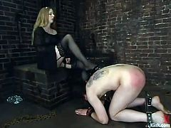 This dude gets released from the cage. Then he gets his nipples pinched with steel claws and ass spanked by his blonde mistress.