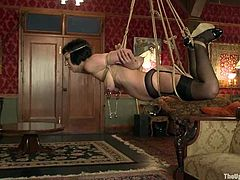 Two sassy sirens are making the show so hot! Jynx Maze is here to torture Cherry Torn's tight pussy and she does it with a great pleasure, having her tied up and tugged with ropes!