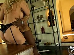 Blonde mommy Julia needs some real action. Well, it can't get any more real that having a big black cock stuffed in her pussy. This guy will give her all that she needs as he lays her on the table and fucks her snatch deep and hard. Does she still has inspiration problems? Maybe some cum will clear her mind.