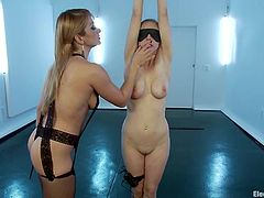 Amazingly hot Lea Lexis ties up and blindfolds Penny. Then Lea kisses Penny and plays with her pussy. Of course Penny Pax also gets wired.