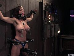 This gorgeous milf in latex gets trapped on the wall and the device for bondage has a mechanism of rubbing a pussy. Christina is stunning from that mechanisms!