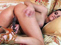 Taylor Vixen cant live a day without toying her hole