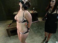 Horny and lusty sex slave Beverly Hills is being treated by her mistress Princess Donna Dolore. She ties her up and sticks some wires on her nipples.