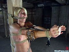 The blonde girl called Vendetta is caged, strapped, tied, anally toyed, gag balled, and more in this lesbian femdom video.