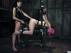 That's some femdom BDSM going on in the house of pain! Smoking hot Nikki Nievez is going to torture that assy chick Cherry Torn!