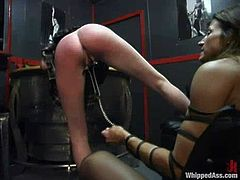 Two sizzling and slender sirens are going to feel pretty hot in this amazing BDSM. Sexy Kym Wilde possesses over Lana Lynx.