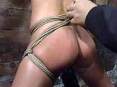 Hot brunette Melissa Lauren is getting naughty with some guy in a basement. She allows the dude to tie her up and then gets her cunt toyed like never before.