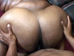 Check this nasty ebony plumper gagging herself on a thick rod of black meat. Then watch her ride it into kingdom come on the couch while teasing with her big natural boobs.