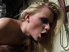 Blonde hussy Katy Parker and Natasha Brill show their love for love box in girl-on-girl action