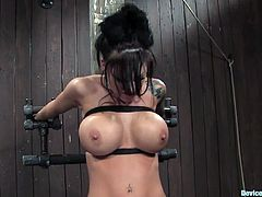 Tattooed Mason Moore gets toyed in hot BDSM vid