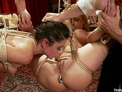 Slim, young and very pretty, our girls have learned, that is better to obey and enjoy it too. While the sexy blonde was hanging completely tied up, her brunette gf was getting fucked from behind. She was then brought to lick the blonde's pussy and after her tongue slided on those pussy lips, it was time for Gray's cock.