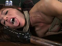 Amazing Italian girl on high heels stands on all fours on the table being tied up and gagged. She gets her pussy drilled by the fucking machine from behind.
