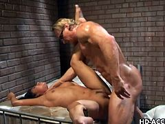 Mesmeric busty bimbo Brandi Lyons meets up with two raunchy blokes for some hardcore anal invasion. She sucks both of their stiff penors before taking one of them inside her wet snatch. She gags on one hard boner while the other one is sliding inside her tender anus.
