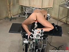 Amazing dark-haired chick Tiffany Taylor is having fun indoors. She spreads her legs wide open and gets her smooth vag drilled by a fucking machine.