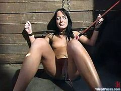 There's crazy anal toying and also sybian action in this lesbian BDSM video with torture and outdoors fun.