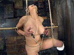 Busty Asian girl gets tied up and suspended. Later on a guy clothespins her tits and drills the pussy with a dildo.